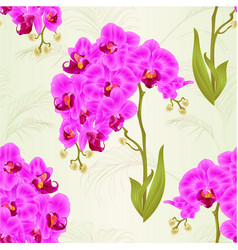 seamless texture branches orchid phalaenopsis vector image