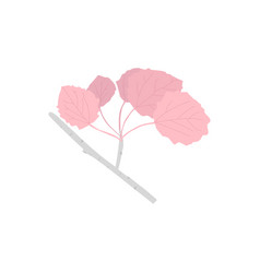 aspen branch with pink leaves vector image