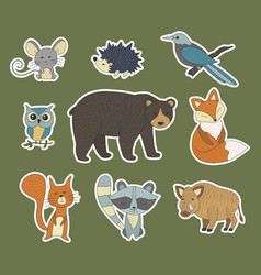 Big set with hand drawn forest animals vector