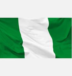 Flag republic nigeria vector