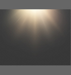 light sun effect isolated on transparent vector image