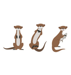 set cute weasel adorable funny wild animal vector image