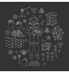 Beekeeping honey collection vector image vector image