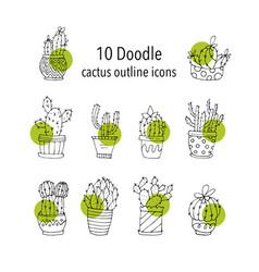 Cactus succulents vector