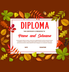 education certificate with autumn leaves diploma vector image