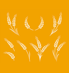 Natural white wheat ears icon logo set vector