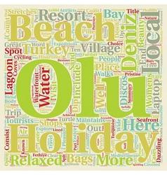 Olu Deniz Turkey Holidays text background vector image