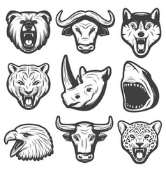 vintage wild animals set vector image