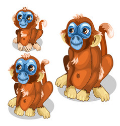 brown funny monkey with blue face isolated vector image