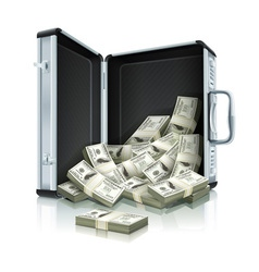 Case with dollars vector