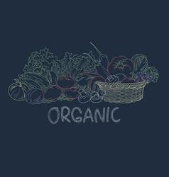 drawing vegetable on blackboard vector image