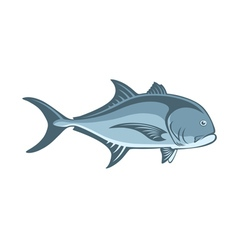 Fish Caranx vector