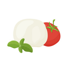 Mozzarella ball tomato green basil branch hand vector