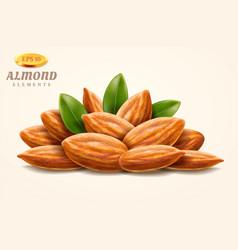 Pile 3d almond nuts or heap hazelnuts vector