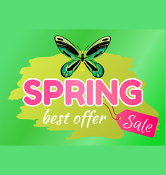 spring best offer sale sticker of green dragonfly vector image