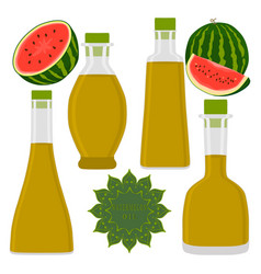 The theme bottles oil vector