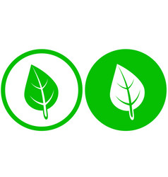 Two round leaf icons vector