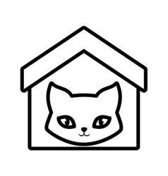 cat breed animal mammal house pet outline vector image vector image