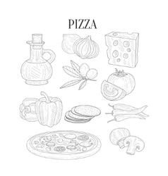 Pizza Ingredients Isolated Hand Drawn Realistic vector image