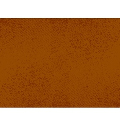 grunge brown texture vector image