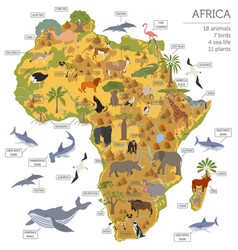 Flat africa flora and fauna map constructor vector