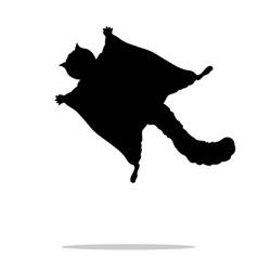 Flying squirrel black silhouette animal vector