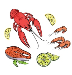 Hand drawn sea food set vector