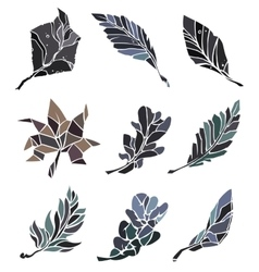 Sketch leaves elements set vector image