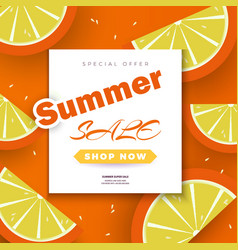 summer sale background for bannersorange slices vector image
