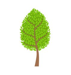 tree with lush green foliage leaves element of a vector image vector image