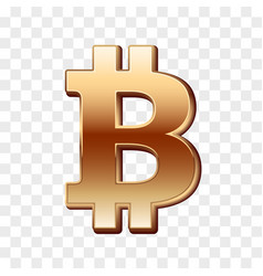 bitcoin golden sign vector image