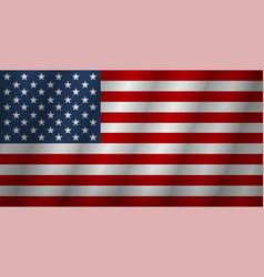flag american background flag usa isolated vector image
