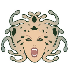 head medusa mythological creature with human vector image