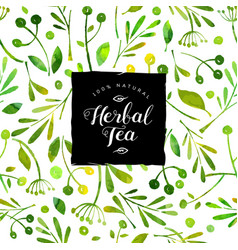 Logo herbal tea watercolor seamless pattern vector