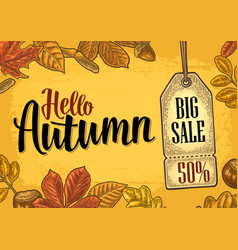 poster autumn lettering with set leaf and acorn vector image