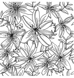 seamless pattern contour lily flower vector image