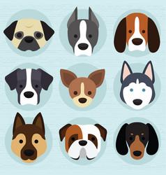 Set cute dogs vector