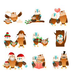 Set cute family owl in different daily funny vector
