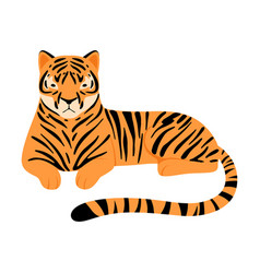 Striped tiger on a white vector