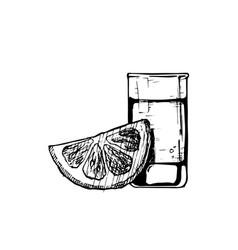 shot glass vector image vector image