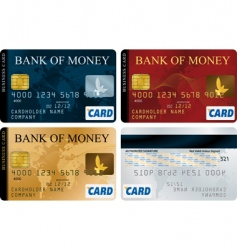 credit cards vector image
