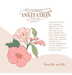 Vintage hibiscus flower on white background vector image vector image