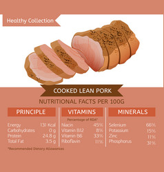Healthy collection meat vector
