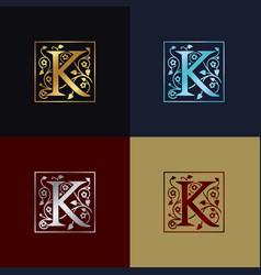 letter k decorative logo vector image