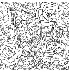 seamless pattern contour roses flower vector image
