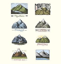 set of engraved vintage hand drawn old labels vector image