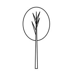 Tree isolated symbol vector