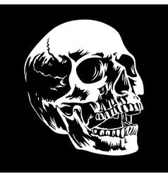 Skull 002 vector image vector image