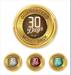 30 days money back button vector image