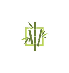 Bamboo logo template icon vector